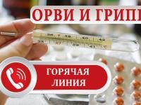 Организована работа «горячей» линии по актуальным вопросам профилактики респираторных заболеваний