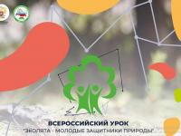 Урок «Эколята – молодые защитники природы»